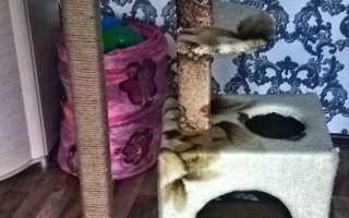 Домик для кота из обрезков пиломатериалов