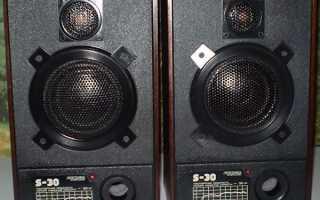 Доработка (апгрейд) акустической системы Радиотехника S30