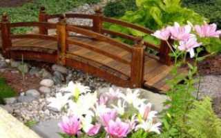 Ландшафтный дизайн. Сухой ручей для дачи своими руками (фото)