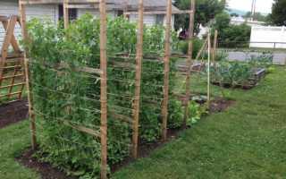Самодельные складные мобильные шпалеры для сада и огорода