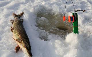 Как сделать жерлицу для зимней рыбалки своими руками