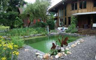Необычная идея для загородного дворика: два в одном – бассейн и пруд своими руками