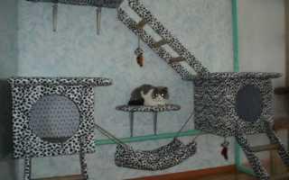 Домик, когтеточка для кошки своими руками (фото, мастер-класс, чертежи)