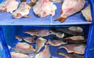 Сушилка для рыбы своими руками