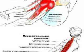 Самодельный тренажер гиперэкстензия (чертежи, фото, видео)