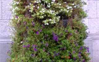 Контейнер для растений из ПВХ трубы