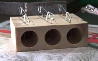 Мышеловка, своими руками сделанная из ведра