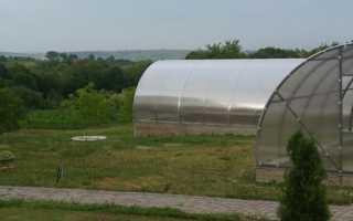 Парник с арочной крышей