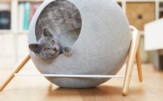 Игровой домик для кошек с когтеточкой своими руками
