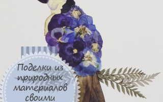 Дмитриева Н.Ю. – Поделки из природных материалов (Поделки-самоделки) (2010)