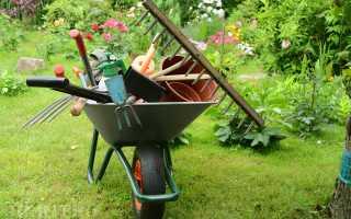 Самодельный ящик для хранения огородно-садового инвентаря (фото, чертежи)