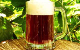 Как варить пиво дома?