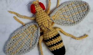Гусеница крючком: мастер-класс с описанием и пошаговыми фото