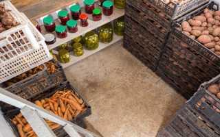 Самодельный ящик для хранения картофеля, сделанный своими руками