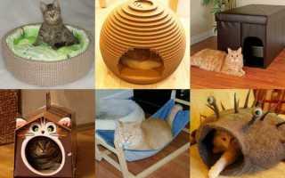 Домик для кошки своими руками (чертежи, фото)